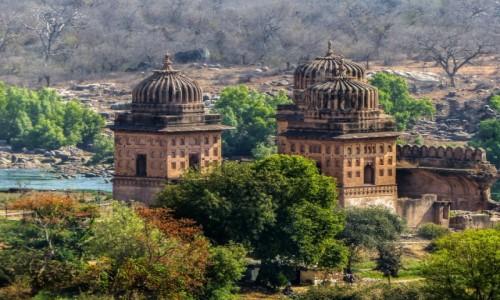 Zdjęcie INDIE / - / Orchha / Orchha-Cenotafy