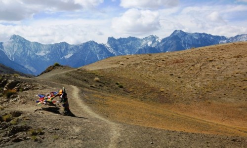 Zdjecie INDIE / Ladakh / Okolice Likir / Na szlaku