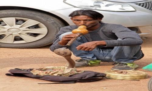 Zdjecie INDIE / - / Delhi / Twarze Indii 10