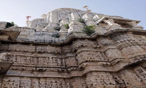 Zdjęcie INDIE / Radzasthan / Udaipur / Wenecja 36             (Indii)