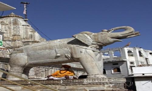 Zdjecie INDIE / Radzasthan / Udaipur / W cieniu słonia