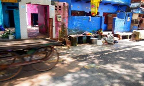 Zdjecie INDIE / Uttar Pradesh / Agra / Ulice Agry