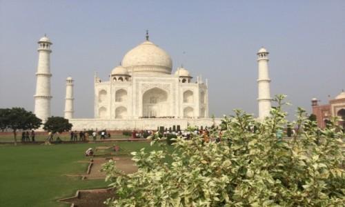 Zdjecie INDIE / Północ / Indie / Taj Mahal