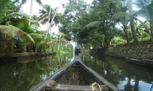 INDIE / Kerala / Alleppey / Backwaters w Alleppey