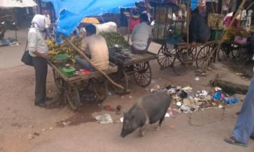 Zdjecie INDIE / Uttar Pradeś / Fatehpur Sikri / Uliczny targ w Fathepur Sikri