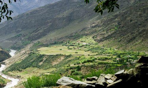 Zdjecie INDIE / Keylong- Lahaul- Indie Północne / Keylong w drodze do Khardong Gonpa / Terasy uprawne