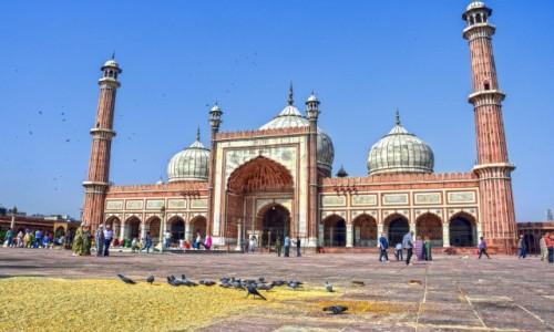 Zdjecie INDIE / - / Delhi / Wielki Meczet w Delhi