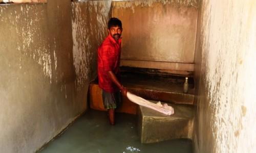 Zdjęcie INDIE / Kerala / Cochin / pralnia miejska - pracz przy pracy