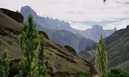 Zdjecie INDIE / Ladakh- J&K- Indie P�nocne / Wanla /  Wanla-Hunupata