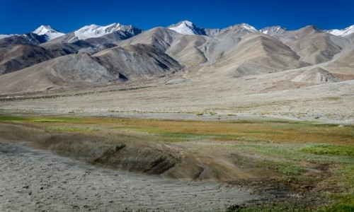 Zdjęcie INDIE / Ladakh / Pangong Lake / za plecami...