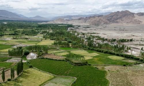 INDIE / Ladakh / Thiksey  / dolina Indusu...