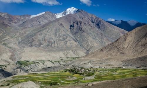 INDIE / Ladakh / wieś Khardung  / u stóp...