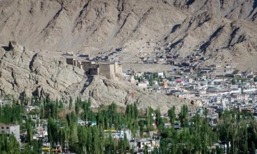 Zdjęcie INDIE / Ladakh / Leh / pałac...