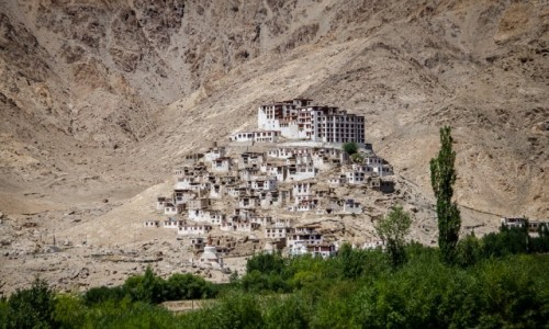 INDIE / Ladakh / Hemis Monastery / daleko od zgiełku...