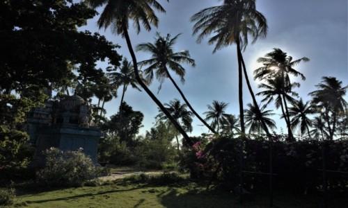 Zdjecie INDIE / stan Tamil Nadu, południowe Indie / Ćennay / kolory dalekich Indii