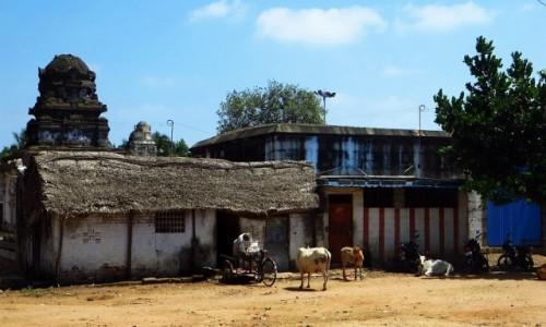 Zdjęcie INDIE / Tamilnadu / Mahabalipuram / ulice Mahabalipuram