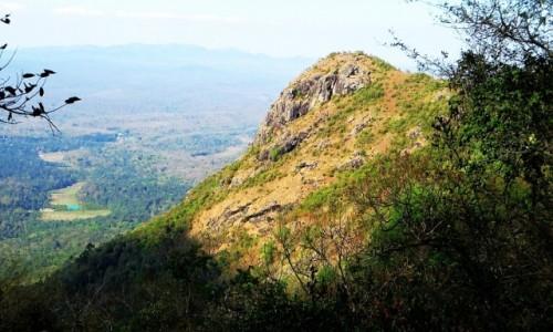 Zdjęcie INDIE / Karnataka / P.N. Bandipur / widoczek