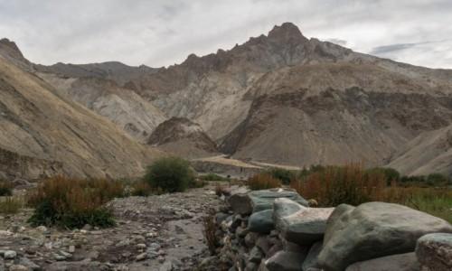 Zdjecie INDIE / Ladakh / Hankar / surowość gór