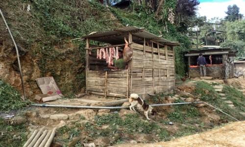 Zdjecie INDIE / Nagaland / Kohima / Aleja mięsnych