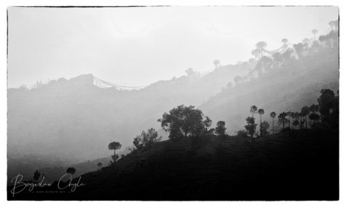 Zdjecie INDIE / Himachal Pradesh / Malali / Okolice Manali