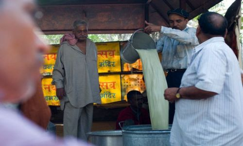 Zdjecie INDIE / Delhi / Świątynia Shivy przy Old Delhi / bhang czyli inaczej special lassi