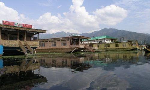 Zdjęcie INDIE / Kashmir / Dal lake / Dal lake