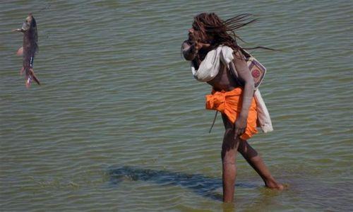 Zdjecie INDIE / Radżastan / Pushkar / Pushkar - mężczyzna oczyszcza święte jezioro
