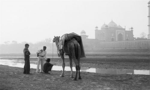 Zdjecie INDIE / Uttar Pradesh / Agra / Indie inaczej - Tadż Mahal o świcie