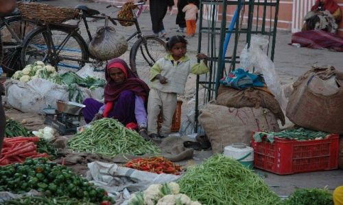 Zdjecie INDIE / brak / Jaipur  / Targ