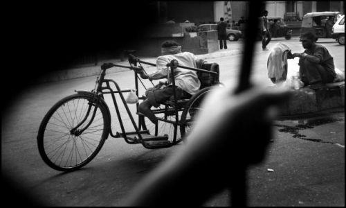 Zdjecie INDIE / brak / DELHI / DELHI