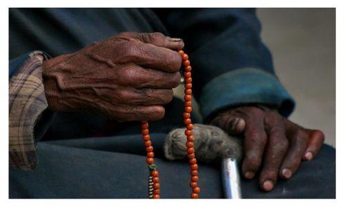 Zdjęcie INDIE / Ladakh / dolina Nubry / ***