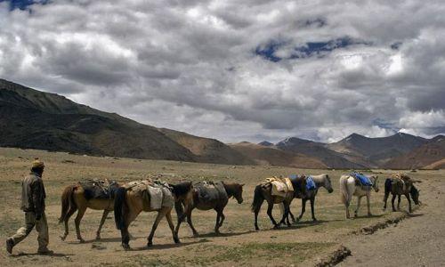 Zdjęcie INDIE / Ladakh / droga Manali-Leh / Płaskowyż
