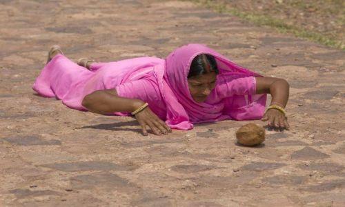 INDIE / brak / Ranthambhore / W drodze do swiatyni II