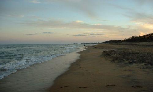 Zdjecie INDIE / Tamilnadu / plaża w okolicach Majabalipuram / plaża o zmierzchu