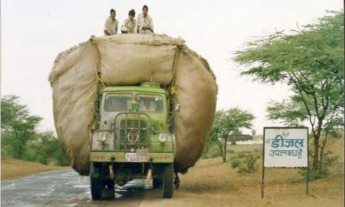Zdjecie INDIE / Rajastan / pustynia Thar / transport bawełny