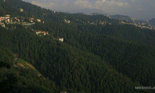 Zdjęcie INDIE / Dehra Dun to Leh / Shimla / Shimla