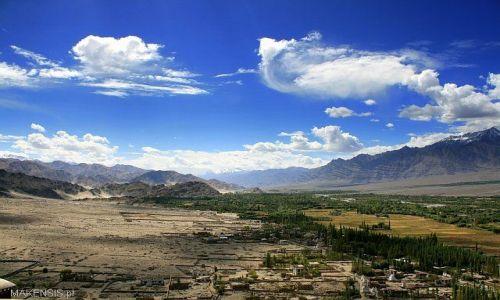 Zdjecie INDIE / Ladakh / Leh / Granica między dobrobytem, a ubóstwem