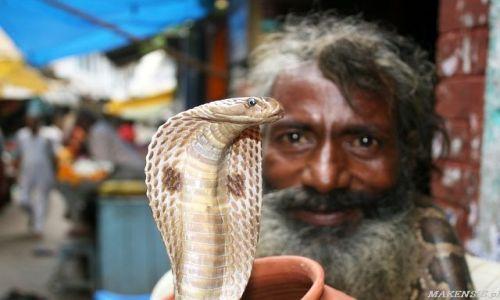 Zdjęcie INDIE / brak / Varanasi / Kolejny sadhu
