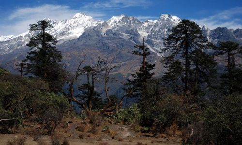 INDIE / sikkim / rejon Kangdzendzongi / Widok na grupę górską Jhopunu