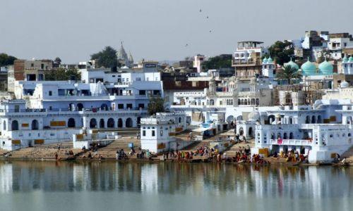Zdjęcie INDIE / Indie / Puskhar / święte miasta