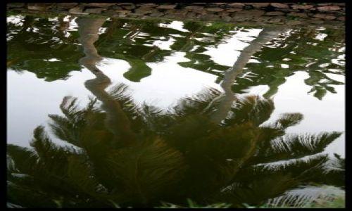 Zdjecie INDIE / brak / Backwaters / Mario ... zielonym do ... dolu ;)