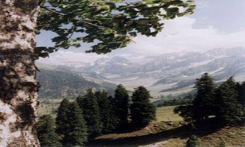 Zdjecie INDIE / Kaszmir / Himalaje / Himalaje