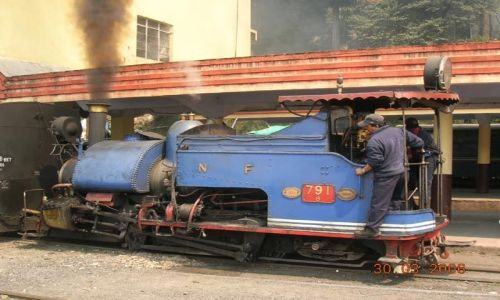 INDIE / Bengal Zachodni / Darjeeling / Toy Train