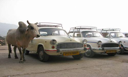 Zdjecie INDIE / brak / rishikesh / postój taxi