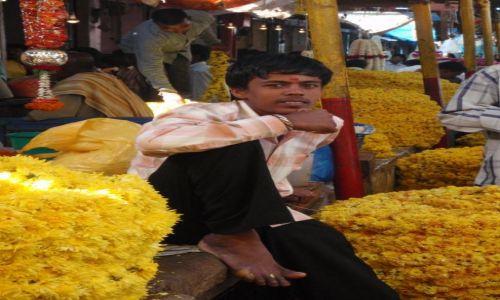 Zdjecie INDIE / brak / Mysore / Targ kwiatów