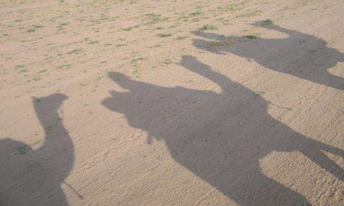 Zdjecie INDIE / Rajastan / Jaisalmer / ...krawana