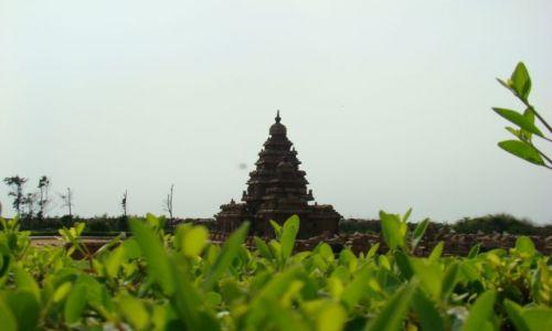 Zdjecie INDIE / Tamil Nadu / Mamallapuram / Świątynia w Mamallapuram