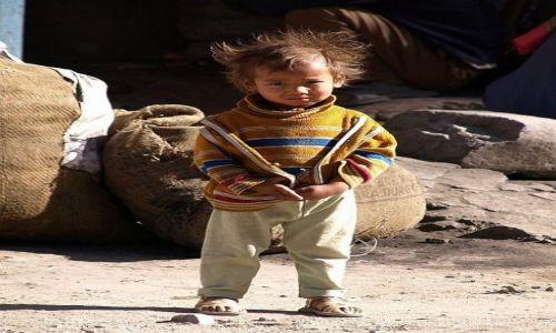 Zdjęcie INDIE / Dolina Ladakh, tzw. Mały Tybet / Leh / Kiedy popatrzył na mnie...