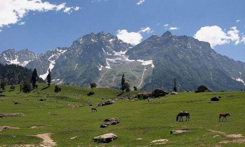 Zdjecie INDIE / Himalaje / Himalaje / Sielska Dolina
