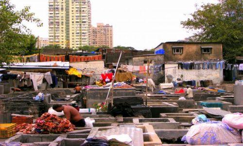 Zdjęcie INDIE / brak / Bombaj / Pralnia miejska w Bombaju
